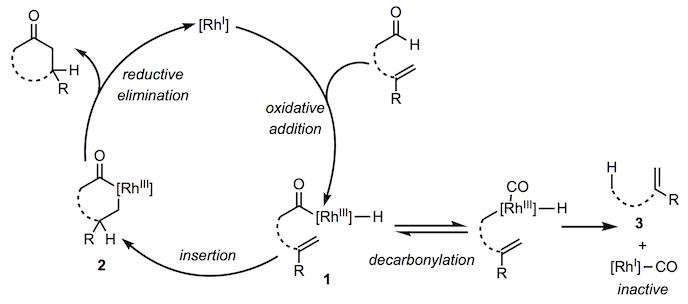 加氢酰化,机甲,1.png