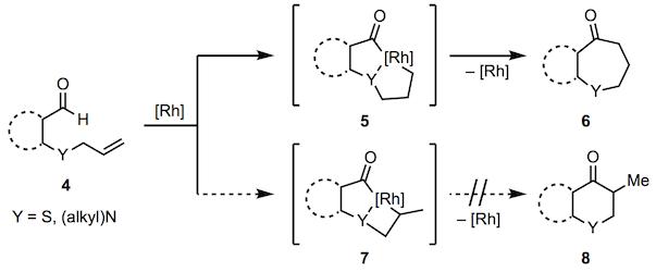 加氢酰化-机甲2.png
