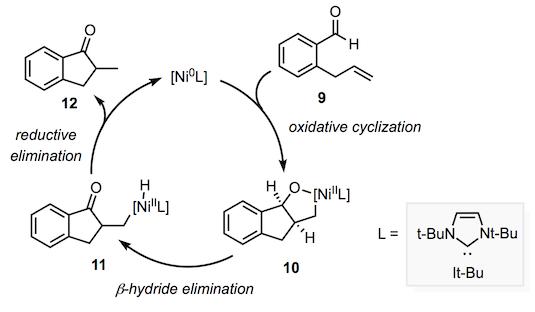 加氢酰化,机甲,3.png