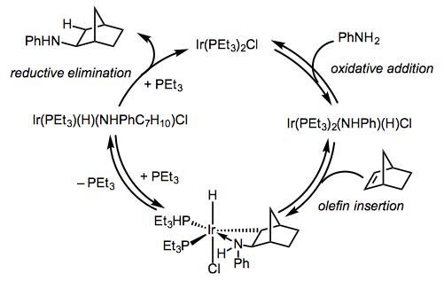 氢化胺 - 机甲-3.png